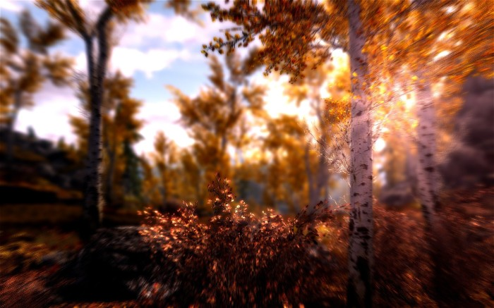nature-landscapes_widewallpaper_shine-down_20558